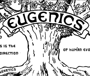 annual abortions views eugenics racial issues remain subject bitter debate